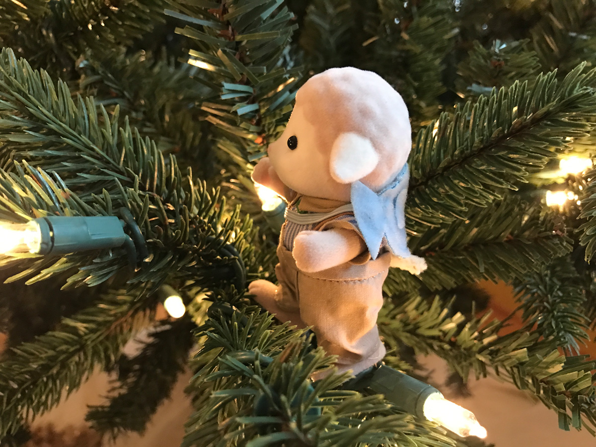Gwilym's First Steps Across the Christmas Tree in Under the Floorboards