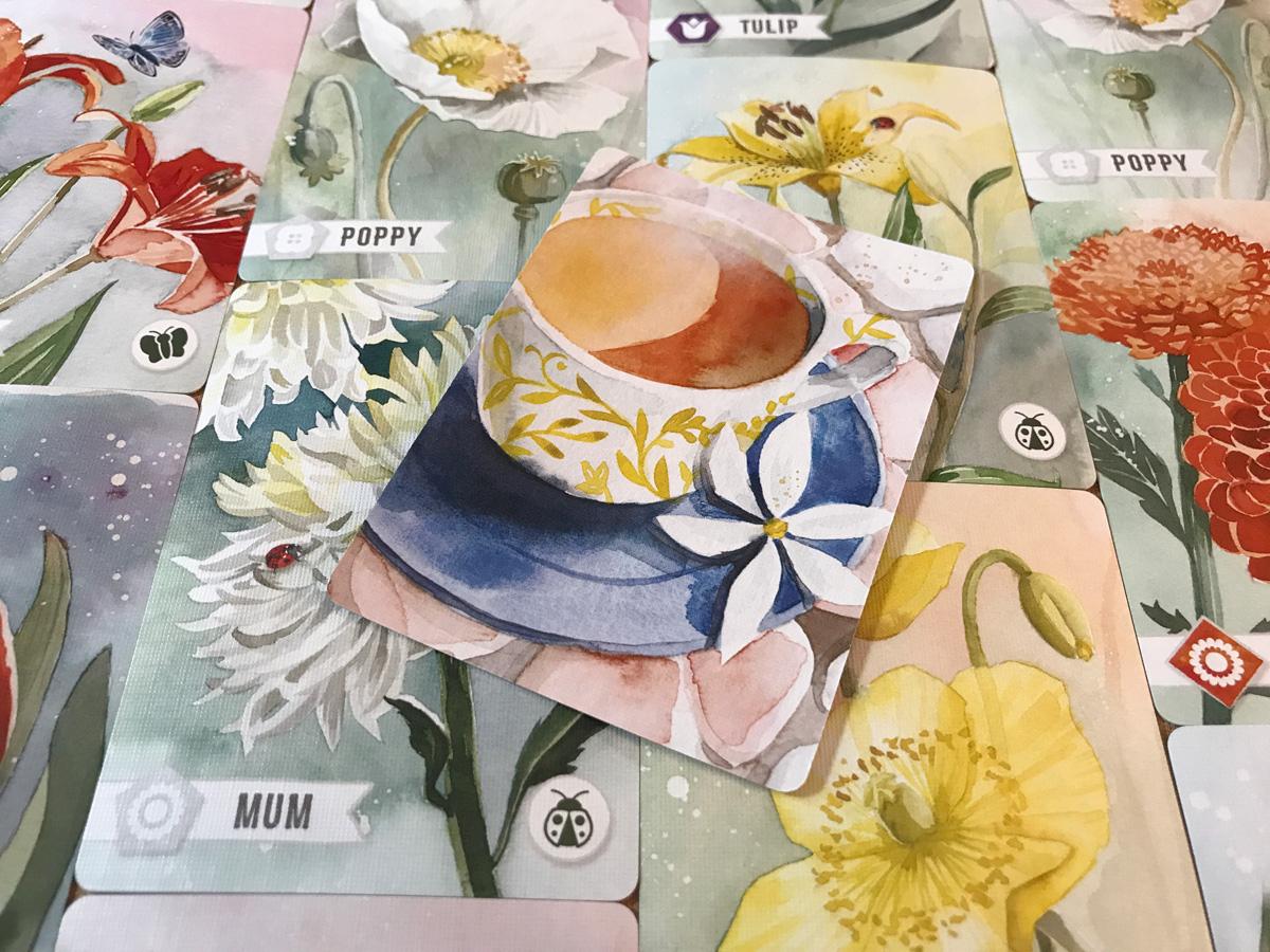 Saving the Cup of Tea in Floriferous Despite a Pesky Guest
