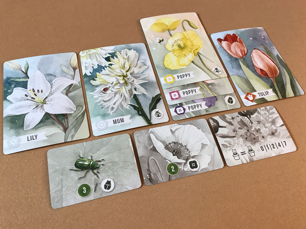 Expanding the Collection and Desire Cards in Floriferous